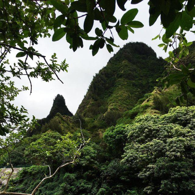 The beauty of Iao Maui was the last island tohellip